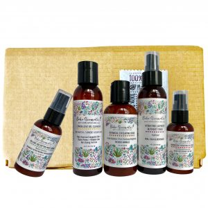SELF LOVE Day-to-Night Skincare Bundle, Oily to Normal Skin, 5 full size bottles